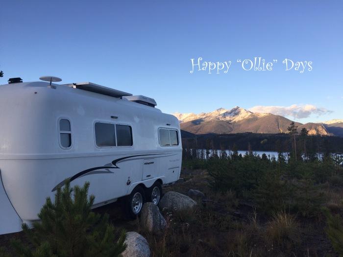 happy-ollie-days