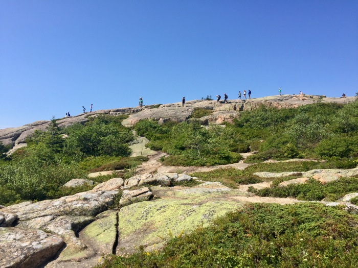 Cadillac Mountain.jpg