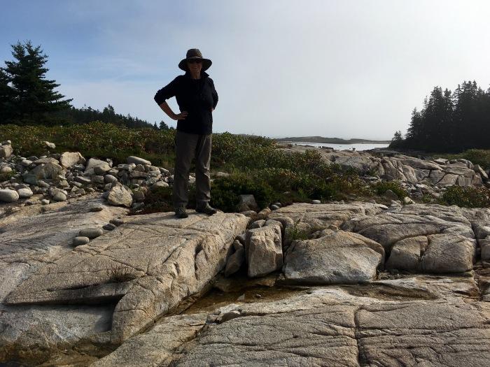 Little Moose Island.jpg