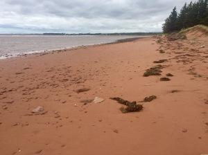 Red beach at PEI