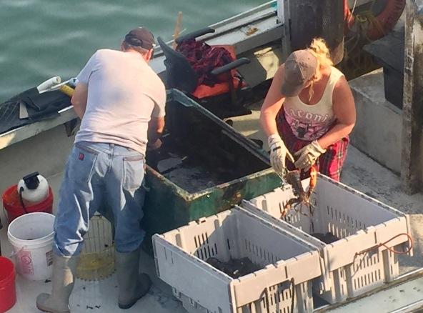 Sorting lobsters