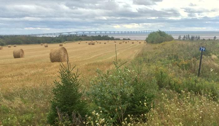 Straw field and bridge