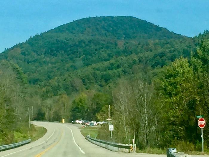Green Mountains (1)
