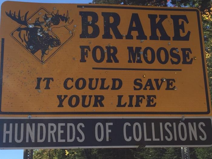 Moose sign.jpg