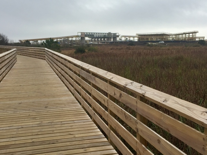 Boardwalk to the beach.jpg