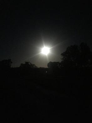 Full moon over Flamingo.JPG