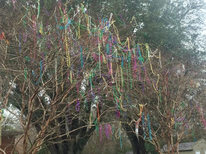 Mardi Gras remnants.jpg