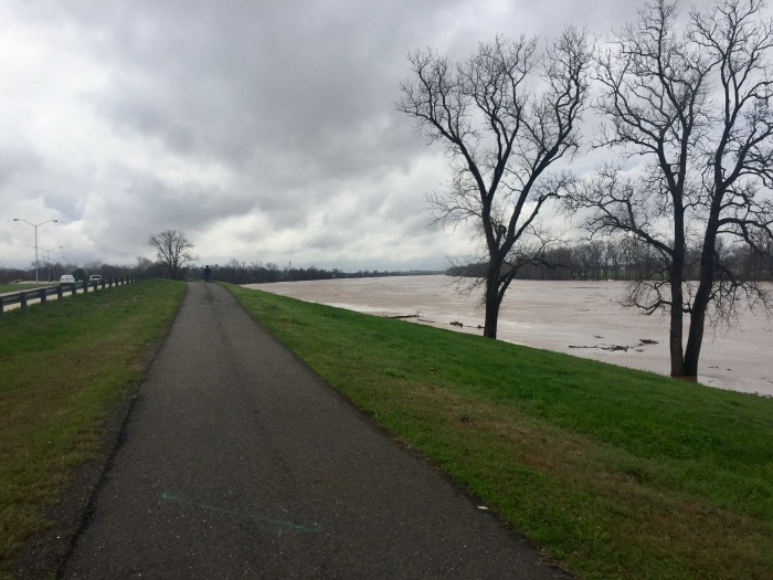 The Red River trail.jpg